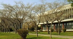Aristotle Univershitty of Thessaloniki (ΑΠΘ)