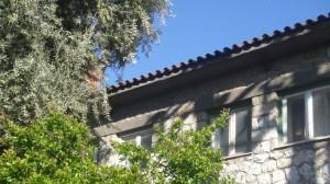 Μια Θεσσαλονικιά στην Αθήνα: Συνοικία το Όνειρο ή Άνω Πετράλωνα