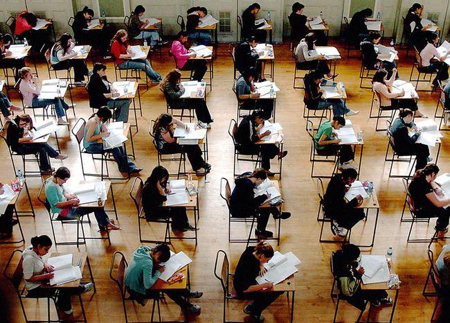 Δείτε πως μειώνεται η παιδική ευφυία στο μισό με τη σχολική εκπαίδευση