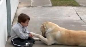 Ο σκύλος και το παιδάκι