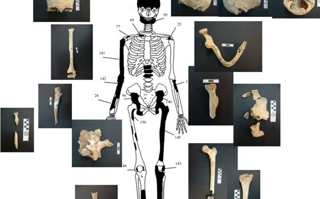 Αμφίπολη: Πέντε οι νεκροί του τάφου! – Μια γυναίκα, δυο άνδρες και ένα νεογέννητο