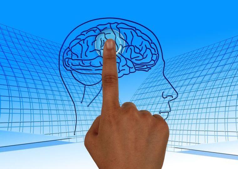 Ο εγκέφαλος έχει ένα Κουμπί Διαγραφής! Μάθε πως να το χρησιμοποιείς