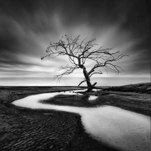 """Ατομική έκθεση φωτογραφίας """"Silent Waters"""" από τον Γιώργο Διγαλάκη"""