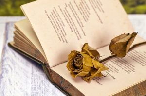 Βίοι «Καταραμένων» ποιητών- Φρανσουά Βιγιόν (Francois Villon)