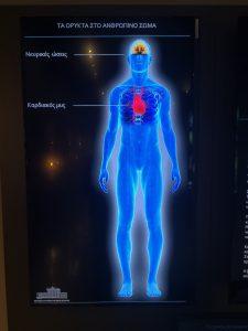 Τα Ορυκτά και ο Άνθρωπος, στο Αριστοτέλειο Μουσείο Φυσικής Ιστορίας…