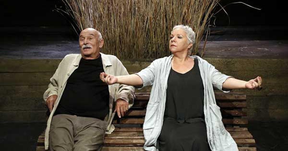 Παραλλαγές πάπιας στη Θεατρική Σκηνή Αντώνη Αντωνίου, κριτική παράστασης